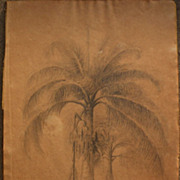 SALE PENDING Nineteenth century antique signed drawing of palm trees