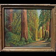 JAMES MERRIAM (1880-1951) California plein air art large oil painting of redwood or sequoia fo