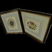 PAIR Original Victorian era botanical watercolor paintings