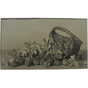 Circa 1900 original still life photograph of strawberries and basket from collection of ...