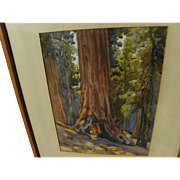 "California vintage plein air art watercolor painting of famous giant sequoia ""Tunnel Tree"