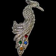 Vintage Rhinestone Pot Metal Bird of Paradise Brooch