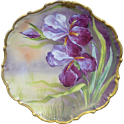 SOLD Fantastic Limoges France Factory decorated purple Iris plate with Burnished gold border w