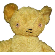 Darling old mohair Teddy bear