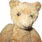 Adorable Antique mohair teddy