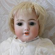 Simon & Halbig Bisque Shoulder Head Doll