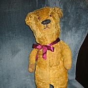 SALE Rare Mohair Teddy Bear Formerly Early 1900s Electric Eye Bear