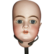 Pretty Handwerck 99 DEP Doll Head