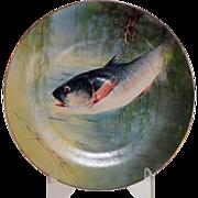 Large Limoges Hand Painted Platter, Fish, Artist signed