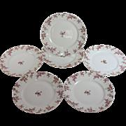 """Set of Six Vintage Limoges Pink Roses dinner plates 9 3/4"""""""