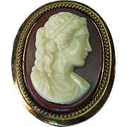 Vintage Celluloid Cameo Brooch Pin