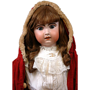 "Huge Stunning Chunky 33"" Jumeau Bebe French Antique Doll in Classic Antique Costume for t"