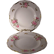 Royal Crown Derby Pinxton Rose Set of Two Salad Plates