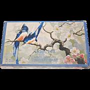 SALE 1930s Schrafft's ~ Bluebird & Cherry Blossom Chocolate Box