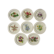 Eight (8) Bone China Floral Coasters, Hammersley & Co.