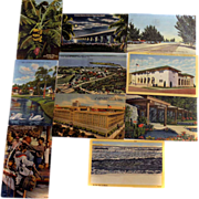 Ten Curteich C.T. Art-Colortone Postcards FLORIDA Scenes 1950s Stamped