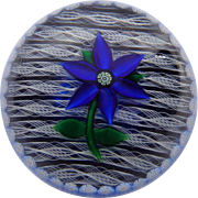 SOLD For Martin Perthshire Blue Gentian Paperweight 1981 D Original Box Certificate #5