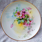 """Colorful Vintage 1900's H & Co. Bavaria Hand Painted Vibrant """"Wild Pink Roses"""" 8-5 ."""
