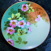 "Outstanding Thomas Bavaria 1900's Hand Painted ""Wild Pink Roses"" 8-1/2"" Plate b"