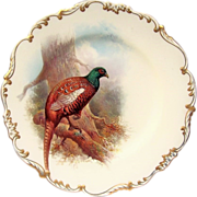 """Exceptional Cauldron England 1920's Hand Painted """"Prince of Wales Pheasant"""" 9"""""""