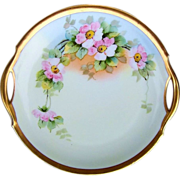 """Beautiful Bavaria Vintage 1900's Hand Painted """"Apple Blossom"""" 10-1/2"""" Plate by"""
