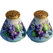 "SOLD Beautiful Bavaria 1900's Hand Painted ""Violets"" Salt & Pepper Shakers by th"
