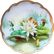 """SALE 12-1/2"""" Gorgeous Limoges France & J.H.Stouffer Studio of Chicago 1906 Hand Painted """""""