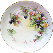 """SALE Gorgeous 13"""" Hutschenreuther Selb Bavaria 1916 Hand Painted """"Blackberries"""""""