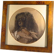 SOLD King Charles Spaniel Chalk Drawing by John Barker Dated 1849