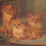 SOLD Large Belgian Oil 3 Pomeranian Dogs Signed F. Gaudfroy 1919