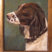 SOLD Springer Spaniel Dog Portrait