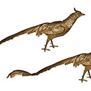 Pair Austrian Bronze Birds