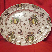"Johnson Brother's ""Autumn Delight"" Small Platter ~ Vintage English Transfer Ware"