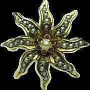 Antique Victorian 10K Seed Pearl Starburst/Sunburst Brooch