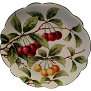 very pretty Hand painted red & yellow cherries Dresden porcelain plate late 1800's