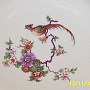 "Rare Homer Laughlin Six-Sided Dinner 9""  Plate Bird Design Old  9 Pieces Available"