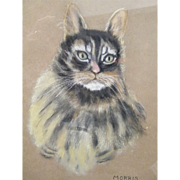 "Pastel of ""Her""  MORRIS The Cat By Elise S Pendleton..19 x 15"