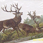 Rare..Victorian Paper Large Stag & Deer  Hunting Scene..Die- Cut..Embossed..New Condition