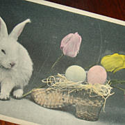 SALE Real Photo Easter Postcard White Bunny With Tulips and Eggs in Straw Shoe Basket