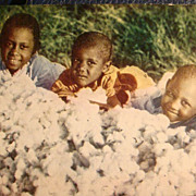 SOLD Black Americana Early Real Photo Postcard 3 Adorable Young Children Playing in the Cotton