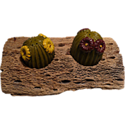 Cactus Salt & Pepper Set