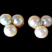 Pretty Cultured Pearl & Diamond Earrings,  14K