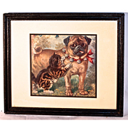 """SOLD """"Pug Dog & Kitten"""" by LOUIS WAIN 1915 - from 'Play Hour Pictures"""" Book by"""