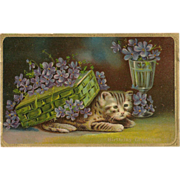 SOLD Embossed Cat or Kitten Postcard with Flowers - Birthday Greetings - Red Tag Sale Item