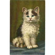 SOLD Vintage Stehli Freres Postcard of Black and White Cat or Kitten  - Signed A. Lampe