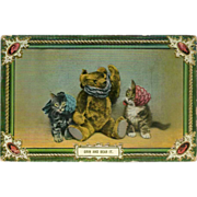 SOLD Glossy Postcard of Teddy Bear with Kittens - Early 1900's - Red Tag Sale Item