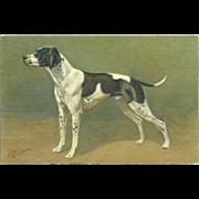 SOLD Pointer Dog Vintage Postcard Signed by Artist J. Rivst. - Red Tag Sale Item
