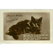 SOLD Vintage Postcard of Cat - Good Wishes Nephew - Red Tag Sale Item