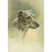 Advertising Embossed Postcard for De Reszke Cigarettes - The Deerhound