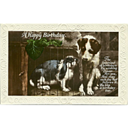 SOLD Vintage Tinted Birthday Photo Postcard of Dog with Bunny Rabbit